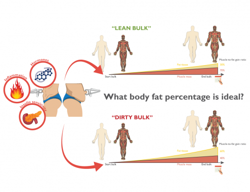 The ideal body fat percentage to bulk
