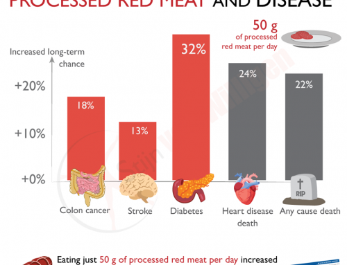 What are the long-term risks of eating processed red meat?