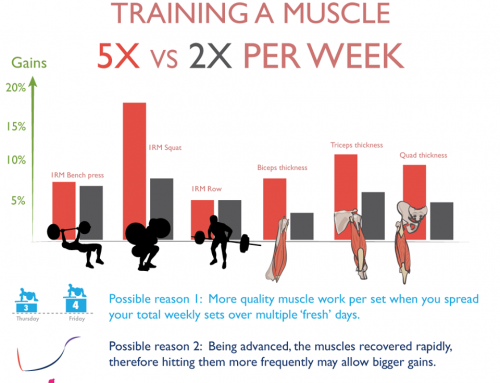 Is training a muscle more frequently better for muscle gains?