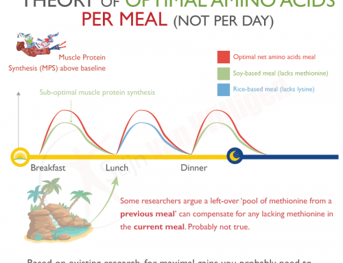 Does it matter how you spread your protein intake over the day?