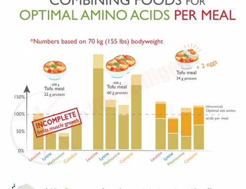 Should weightlifting vegans and vegetarians get serious about their amino acid intake per meal?